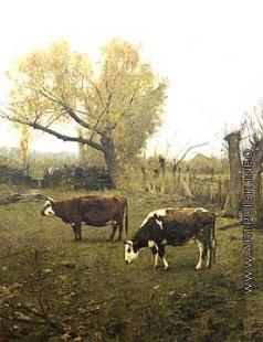Светославский С. И. Коровы