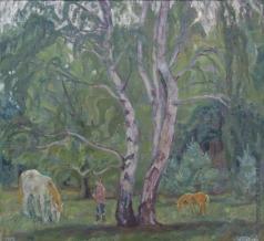 Тутунов А. А. Белые березы и белая лошадь