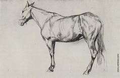 Серов В. А. Лошадь