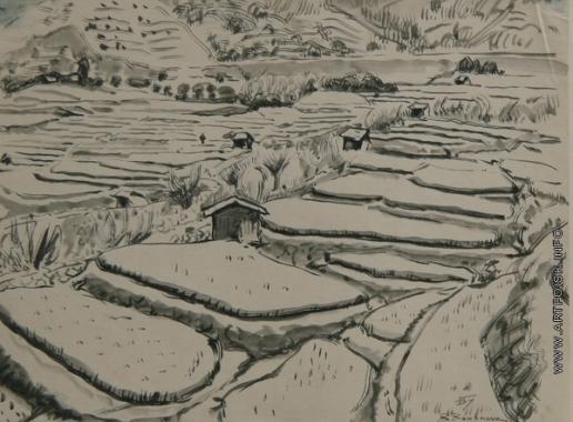 Бубнова В. Д. Рисовые поля