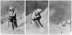 Верещагин В. В. На Шипке все спокойно. Триптих