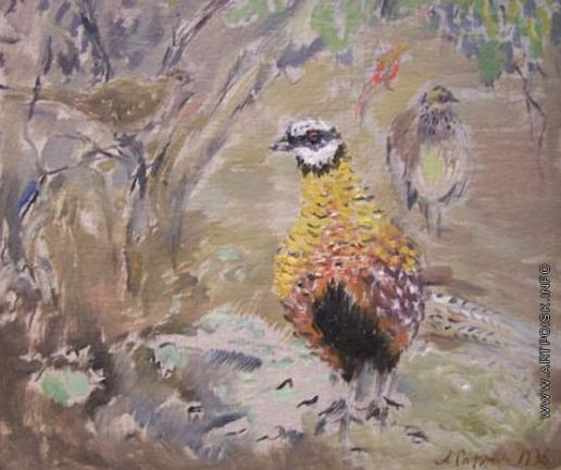 Софронова А. Ф. Фазан и серые птицы