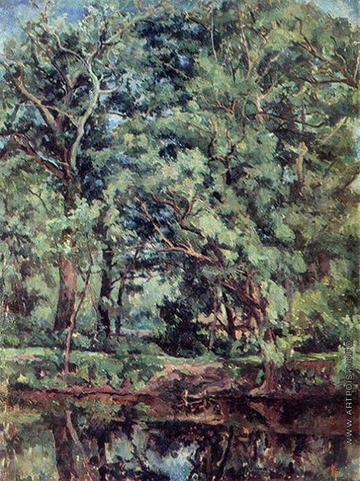 Осмеркин А. А. Деревья на берегу пруда