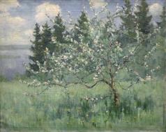 Бялыницкий-Бируля В. К. Цветущий сад