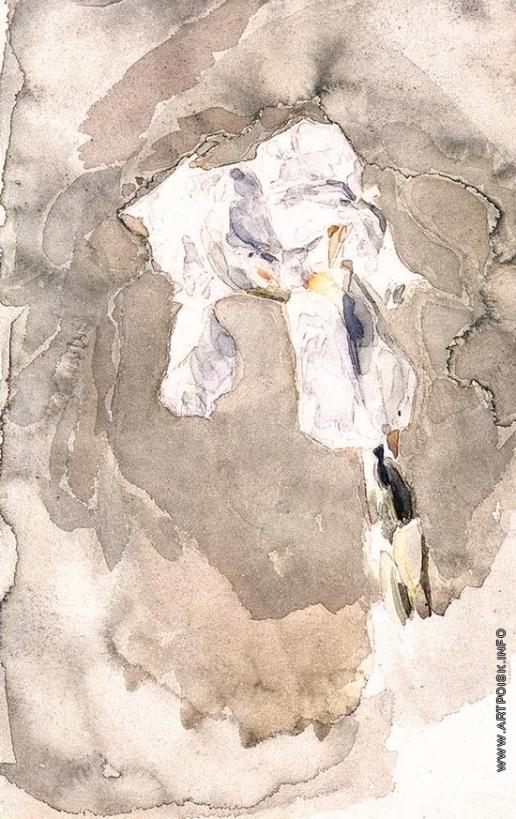 Врубель М. А. Белый ирис