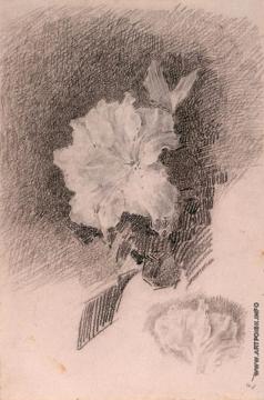 Врубель М. А. Белая азалия с листьями