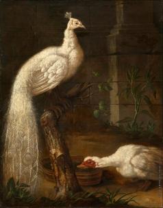 Гроот И. Ф. Гусь и белый павлин
