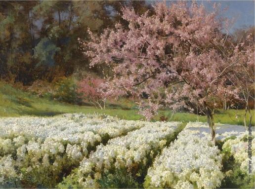 Крачковский И. Е. Весеннее цветение