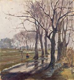 Мамчич С. Г. Старые деревья (вековые)