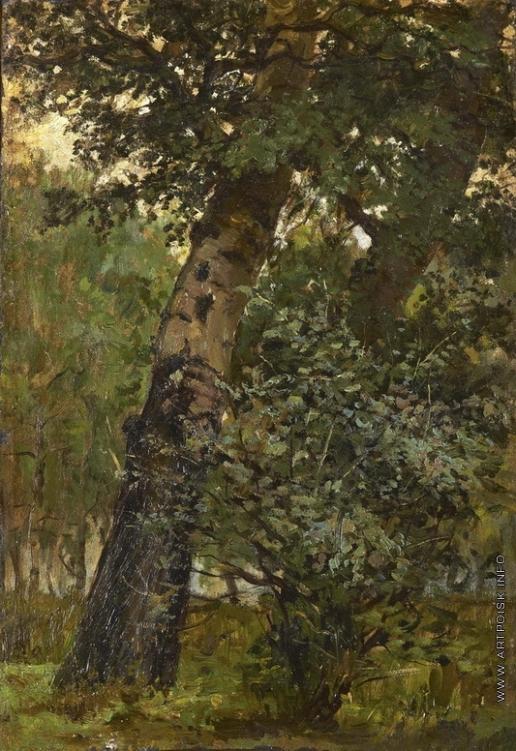 Светославский С. И. Лесной уголок
