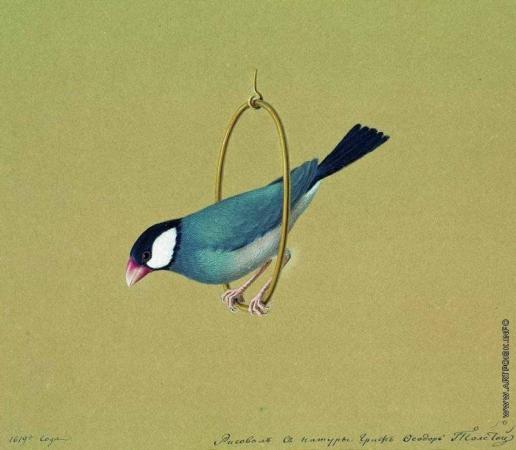 Толстой Ф. П. Птичка в кольце