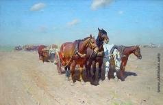 Греков М. Б. Сев. Лошади в степи