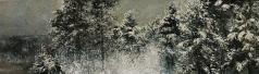 Коркодым В. Н. Зима из моего окна
