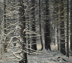 Коркодым В. Н. После снегопада. Еловый лес