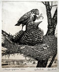 Ярославцев А. И. Гнездо кукушки