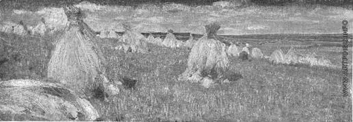Герасимов С. В. В поле