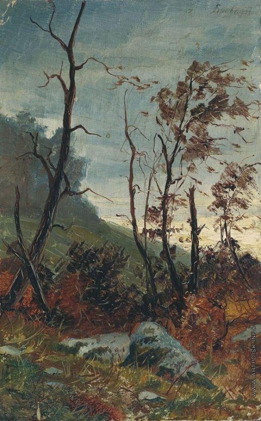Бровар Я. И. Лесной пейзаж