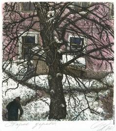 Дергилева А. И. Старое дерево