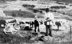 Васильев А. А. Молдавский чабан на освобожденных полях