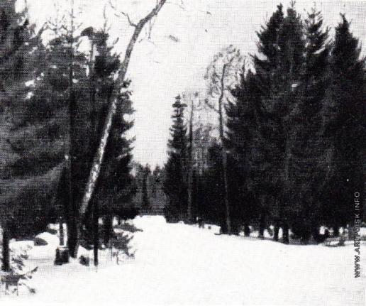 Жуковский С. Ю. Зима. (Лесная дорога)