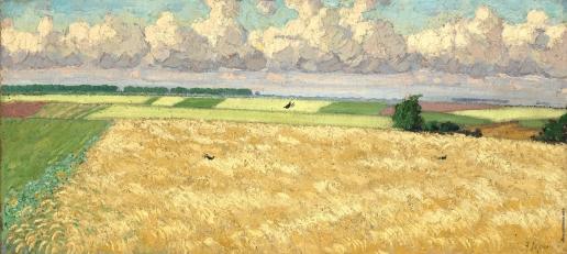 Герасимов А. М. Кукурузное поле