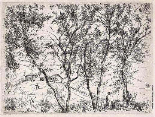 Верейский Г. С. Огороды сквозь деревья