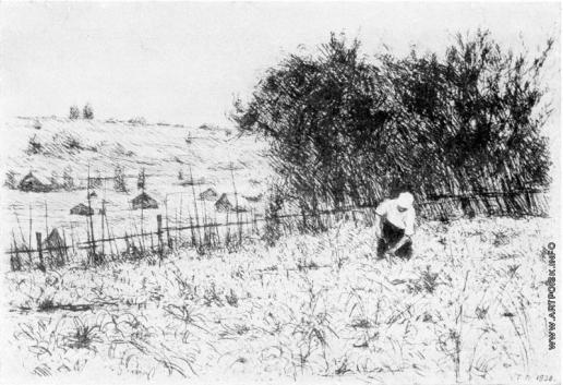 Верейский Г. С. На огороде