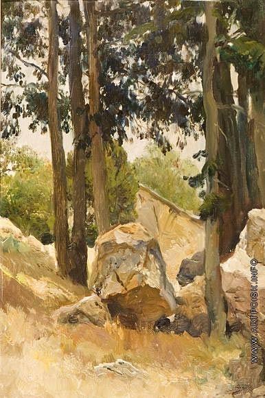Серов В. А. Камни в горах