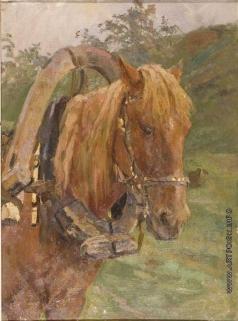 Серов В. А. Рыжая лошадь. Этюд к картине «Степан Разин»