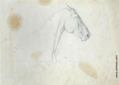 Серов В. А. Набросок лошади