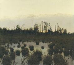 Бялыницкий-Бируля В. К. Вечер в тундре