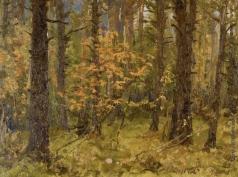 Первухин К. С. Пожелтели листья