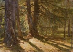 Первухин К. С. Солнечный свет в лесу