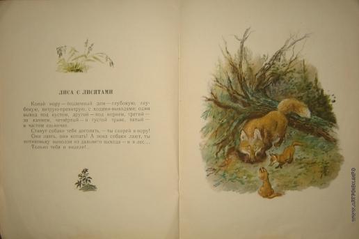 Чарушин Е. И. Иллюстрации к книге «Большие и маленькие»