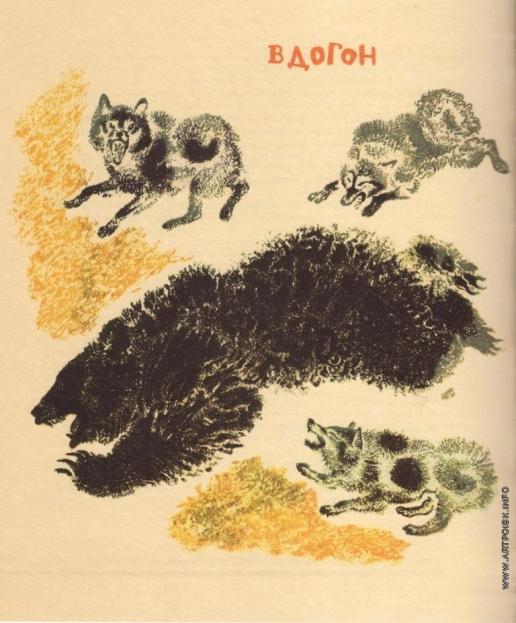 Чарушин Е. И. Иллюстрации к книге «Охото на медведя»