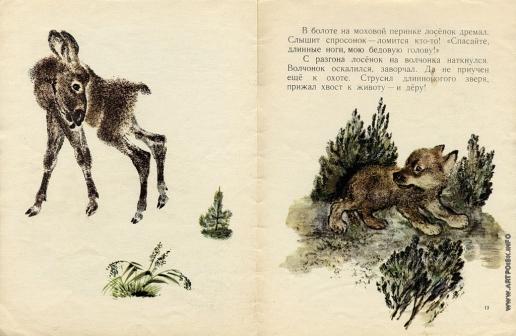 Чарушин Е. И. Иллюстрации к книге «Как медвежонок сам себя напугал»
