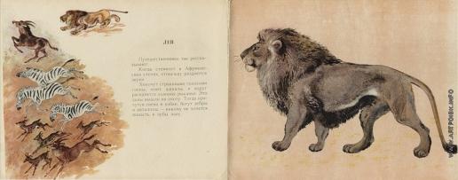Чарушин Е. И. Иллюстрации к книге «Кто как живет»