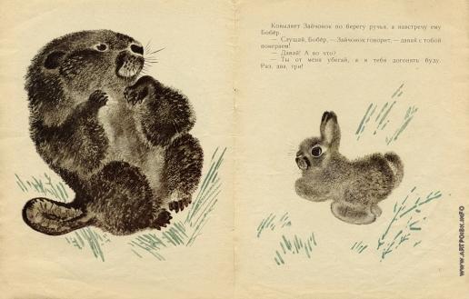 Чарушин Е. И. Иллюстрации к книге «Кто что умеет»