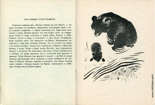 Чарушин Е. И. Иллюстрации к книге «Мишка — большой медведь»