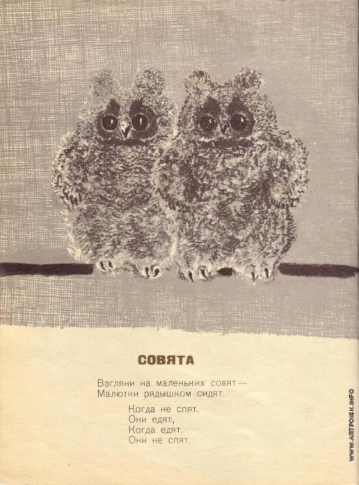 Чарушин Е. И. Иллюстрации к книге «Детки в клетке»