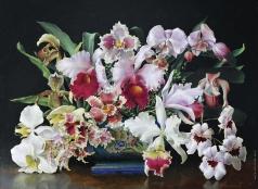 Чистовский Л. С. Орхидеи