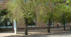 Волгоградский музей изобразительных искусств имени И.И. Машкова