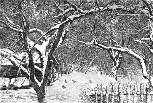 Французов Б. Ф. Зимний сад