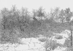 Французов Б. Ф. Зима