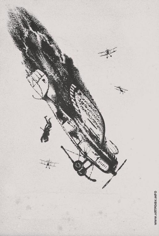 Тамби В. А. Сбитый самолет
