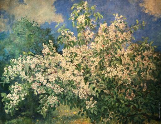 Герасимов А. М. Цветущая яблоня