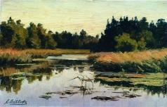 Волков Е. Е. Лесная река
