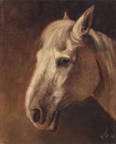 Шварц В. Г. Голова белой лошади
