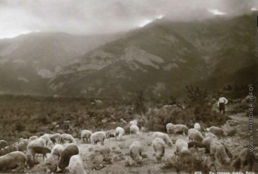 Сокорнов В. Н. В горах близ Ялты