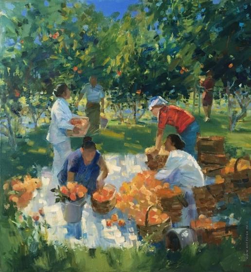 Манукян А. М. Армения. Сбор персиков